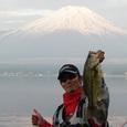 山中湖 43cm 16