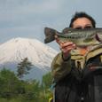 たこぽちさん 山中湖 43cm