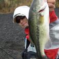山中湖 40cm 40up-38