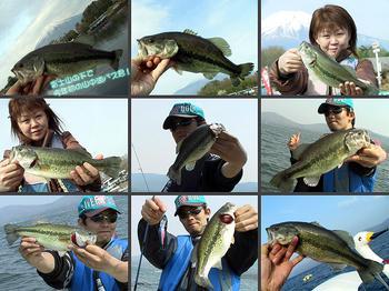 bass/0501