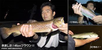 bass/0525