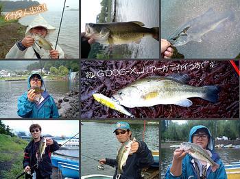 bass/0829_01