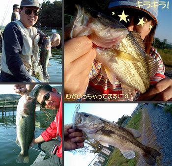 bass/1017_06