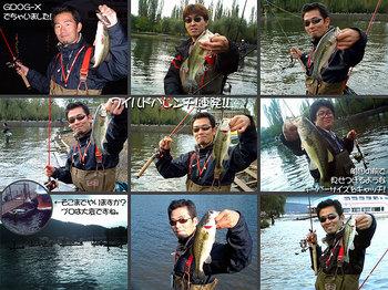 bass/1024